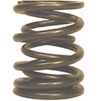 HYDE TWIN VALVE SPRING SET